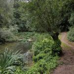Retraite in de natuur